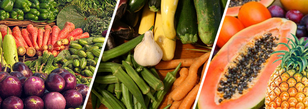 assorted fruits and vegetables ,Manufacturers, Exporters, Suppliers